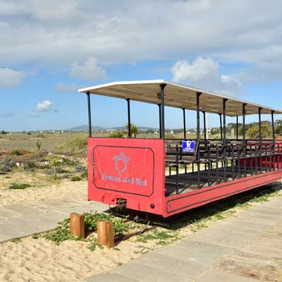 The Pedras D'el Rei mini train